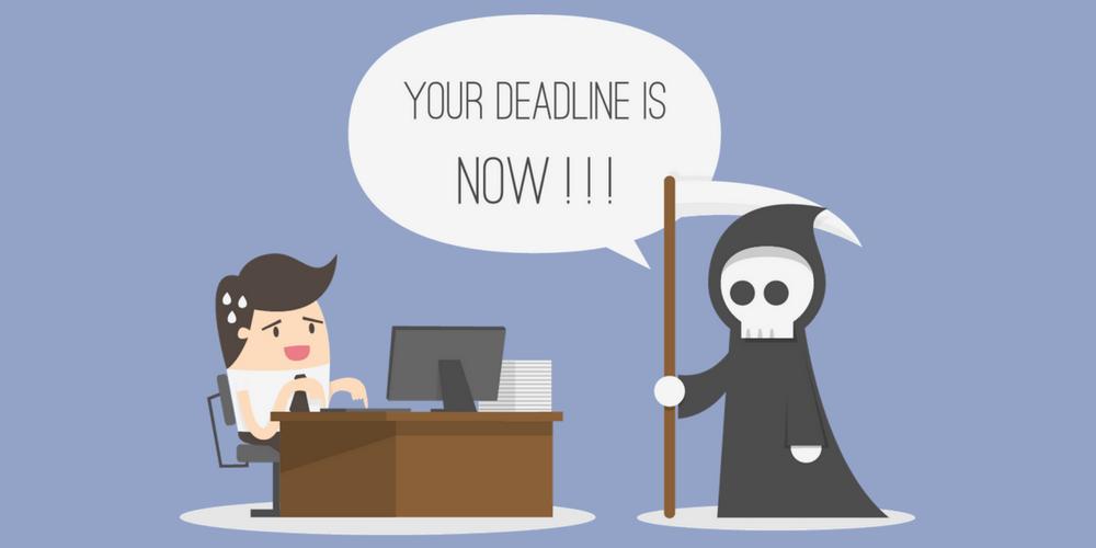 redactores freelance